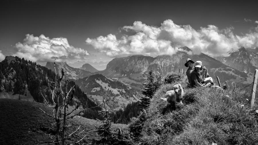"""""""Catch the ball!"""" Taken on Chli Aubrig, Switzerland"""